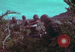 Image of 1st Battalion of 173rd Airborne Brigade Vietnam, 1965, second 16 stock footage video 65675022713