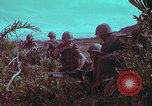Image of 1st Battalion of 173rd Airborne Brigade Vietnam, 1965, second 17 stock footage video 65675022713