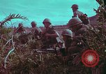 Image of 1st Battalion of 173rd Airborne Brigade Vietnam, 1965, second 18 stock footage video 65675022713