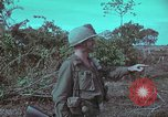 Image of 1st Battalion of 173rd Airborne Brigade Vietnam, 1965, second 24 stock footage video 65675022713