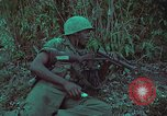 Image of 1st Battalion of 173rd Airborne Brigade Vietnam, 1965, second 35 stock footage video 65675022713
