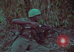 Image of 1st Battalion of 173rd Airborne Brigade Vietnam, 1965, second 36 stock footage video 65675022713