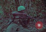 Image of 1st Battalion of 173rd Airborne Brigade Vietnam, 1965, second 37 stock footage video 65675022713