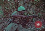 Image of 1st Battalion of 173rd Airborne Brigade Vietnam, 1965, second 39 stock footage video 65675022713