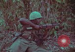Image of 1st Battalion of 173rd Airborne Brigade Vietnam, 1965, second 40 stock footage video 65675022713