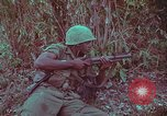Image of 1st Battalion of 173rd Airborne Brigade Vietnam, 1965, second 41 stock footage video 65675022713