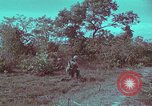 Image of 1st Battalion of 173rd Airborne Brigade Vietnam, 1965, second 42 stock footage video 65675022713