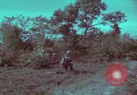 Image of 1st Battalion of 173rd Airborne Brigade Vietnam, 1965, second 43 stock footage video 65675022713