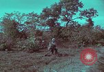 Image of 1st Battalion of 173rd Airborne Brigade Vietnam, 1965, second 45 stock footage video 65675022713