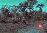 Image of 1st Battalion of 173rd Airborne Brigade Vietnam, 1965, second 49 stock footage video 65675022713