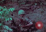 Image of 1st Battalion of 173rd Airborne Brigade Vietnam, 1965, second 50 stock footage video 65675022713