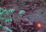 Image of 1st Battalion of 173rd Airborne Brigade Vietnam, 1965, second 51 stock footage video 65675022713