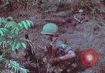 Image of 1st Battalion of 173rd Airborne Brigade Vietnam, 1965, second 53 stock footage video 65675022713