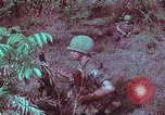 Image of 1st Battalion of 173rd Airborne Brigade Vietnam, 1965, second 54 stock footage video 65675022713