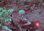 Image of 1st Battalion of 173rd Airborne Brigade Vietnam, 1965, second 55 stock footage video 65675022713