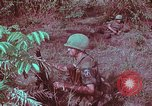 Image of 1st Battalion of 173rd Airborne Brigade Vietnam, 1965, second 56 stock footage video 65675022713