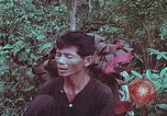 Image of 1st Battalion of 173rd Airborne Brigade Vietnam, 1965, second 17 stock footage video 65675022714