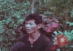 Image of 1st Battalion of 173rd Airborne Brigade Vietnam, 1965, second 18 stock footage video 65675022714
