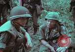 Image of 1st Battalion of 173rd Airborne Brigade Vietnam, 1965, second 24 stock footage video 65675022714