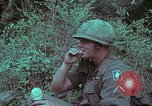 Image of 1st Battalion of 173rd Airborne Brigade Vietnam, 1965, second 35 stock footage video 65675022714