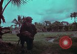 Image of 1st Battalion of 173rd Airborne Brigade Vietnam, 1965, second 44 stock footage video 65675022714