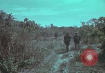 Image of 1st Battalion of 173rd Airborne Brigade Vietnam, 1965, second 7 stock footage video 65675022715