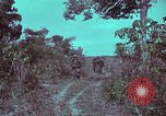 Image of 1st Battalion of 173rd Airborne Brigade Vietnam, 1965, second 14 stock footage video 65675022715