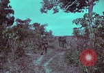 Image of 1st Battalion of 173rd Airborne Brigade Vietnam, 1965, second 15 stock footage video 65675022715