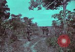 Image of 1st Battalion of 173rd Airborne Brigade Vietnam, 1965, second 16 stock footage video 65675022715