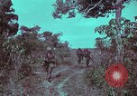 Image of 1st Battalion of 173rd Airborne Brigade Vietnam, 1965, second 17 stock footage video 65675022715