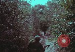Image of 1st Battalion of 173rd Airborne Brigade Vietnam, 1965, second 19 stock footage video 65675022715