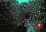 Image of 1st Battalion of 173rd Airborne Brigade Vietnam, 1965, second 22 stock footage video 65675022715