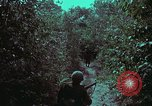 Image of 1st Battalion of 173rd Airborne Brigade Vietnam, 1965, second 23 stock footage video 65675022715