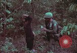 Image of 1st Battalion of 173rd Airborne Brigade Vietnam, 1965, second 27 stock footage video 65675022715