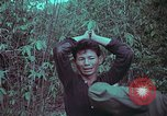 Image of 1st Battalion of 173rd Airborne Brigade Vietnam, 1965, second 31 stock footage video 65675022715