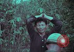 Image of 1st Battalion of 173rd Airborne Brigade Vietnam, 1965, second 34 stock footage video 65675022715