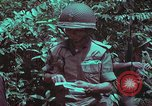 Image of 1st Battalion of 173rd Airborne Brigade Vietnam, 1965, second 41 stock footage video 65675022715