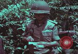 Image of 1st Battalion of 173rd Airborne Brigade Vietnam, 1965, second 42 stock footage video 65675022715