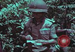 Image of 1st Battalion of 173rd Airborne Brigade Vietnam, 1965, second 43 stock footage video 65675022715