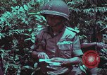 Image of 1st Battalion of 173rd Airborne Brigade Vietnam, 1965, second 44 stock footage video 65675022715