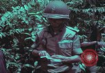 Image of 1st Battalion of 173rd Airborne Brigade Vietnam, 1965, second 45 stock footage video 65675022715