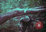 Image of 1st Battalion of 173rd Airborne Brigade Vietnam, 1965, second 53 stock footage video 65675022715