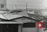 Image of Tropical typhoon Japan, 1950, second 41 stock footage video 65675022719