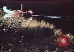 Image of Robert Parson United States USA, 1975, second 1 stock footage video 65675022755