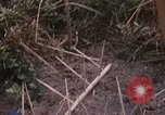 Image of 25th Infantry Division soldiers Vietnam Cu Chi, 1967, second 38 stock footage video 65675022779