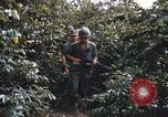 Image of 25th Infantry Division soldiers Vietnam Cu Chi, 1967, second 9 stock footage video 65675022783