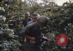 Image of 25th Infantry Division soldiers Vietnam Cu Chi, 1967, second 17 stock footage video 65675022783