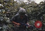 Image of 25th Infantry Division soldiers Vietnam Cu Chi, 1967, second 18 stock footage video 65675022783
