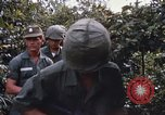Image of 25th Infantry Division soldiers Vietnam Cu Chi, 1967, second 25 stock footage video 65675022783