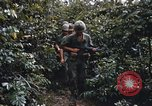 Image of 25th Infantry Division soldiers Vietnam Cu Chi, 1967, second 31 stock footage video 65675022783